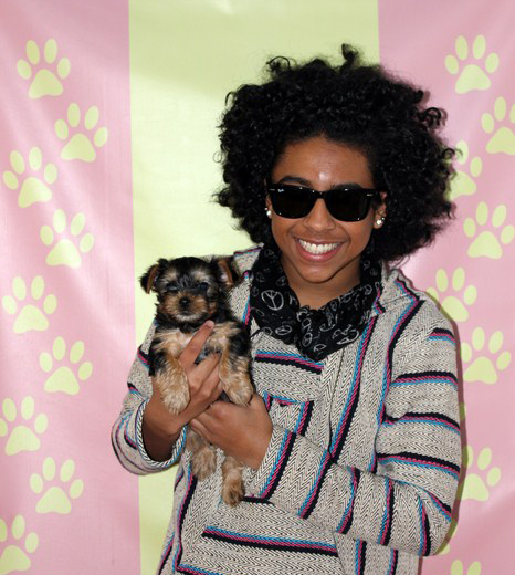Puppy Heaven - Puppy Heaven - Princeton Of Mindless Behavior