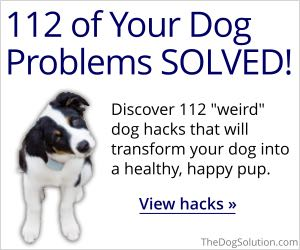 112 Amazing Dog Hacks